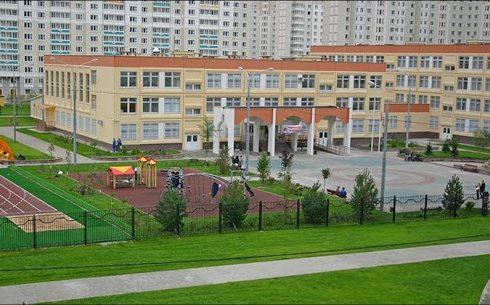 Озеленение и благоустройство территории школ и садов